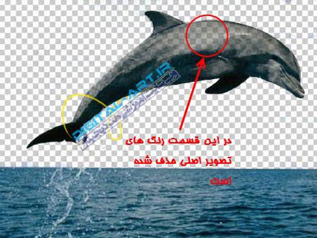 آموزش حذف بک گراند (زمینه) عکس در فتوشاپ-7